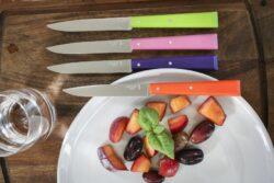 Couteaux Opinel Bon Appétit