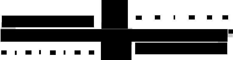 Logo Extrema Ratio